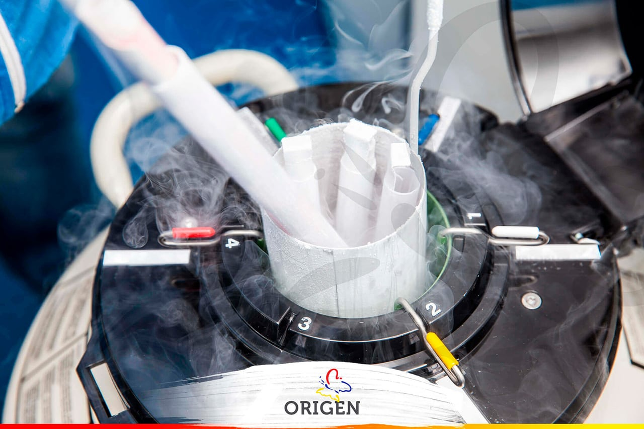 congelamento-dos-embrioes-fiv