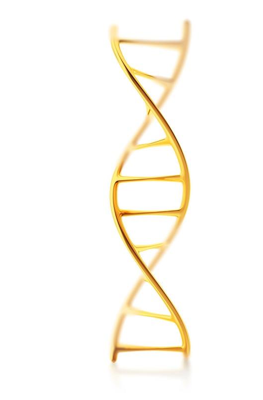 DNA Origen