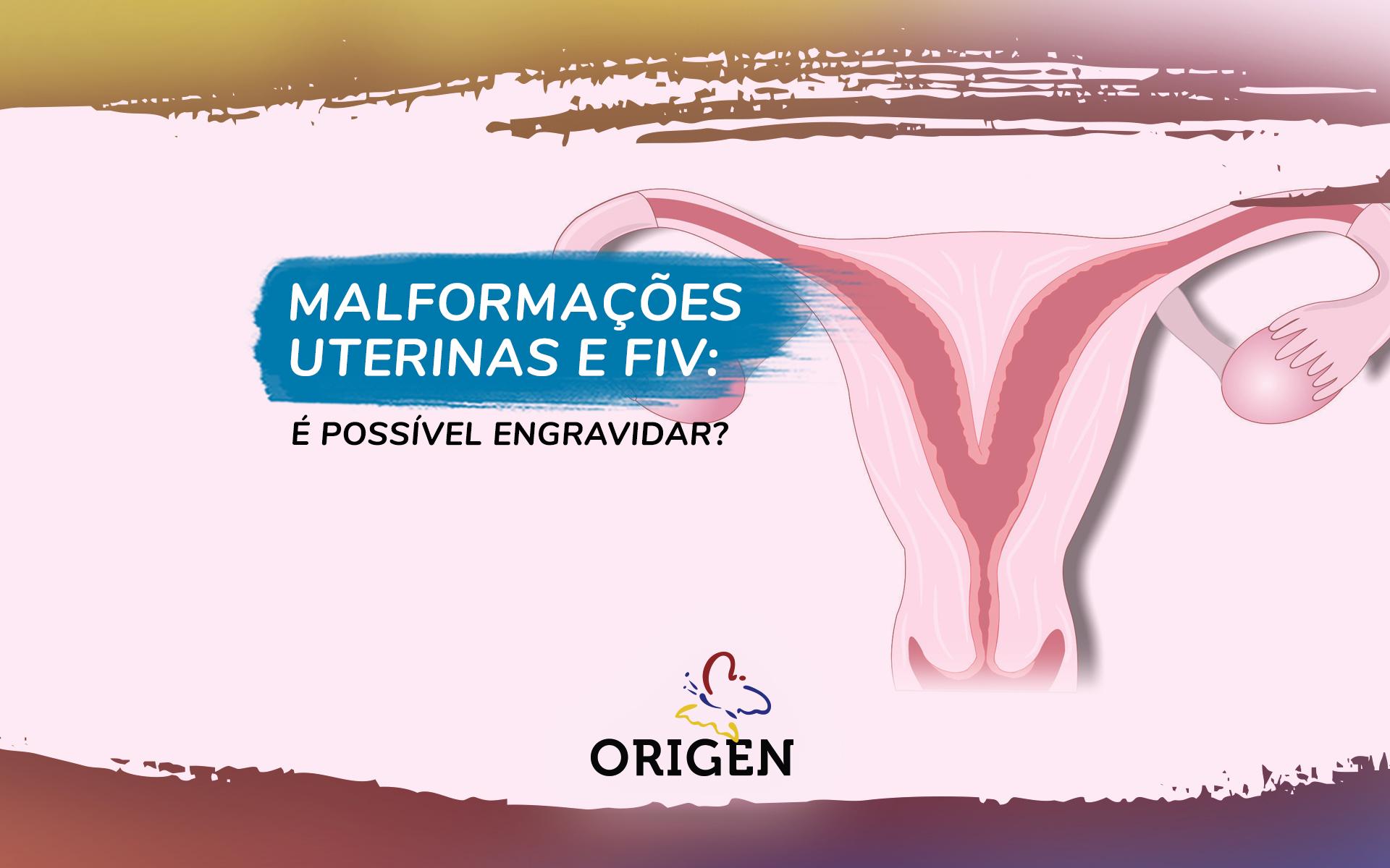 Malformações uterinas e FIV: é possível engravidar?