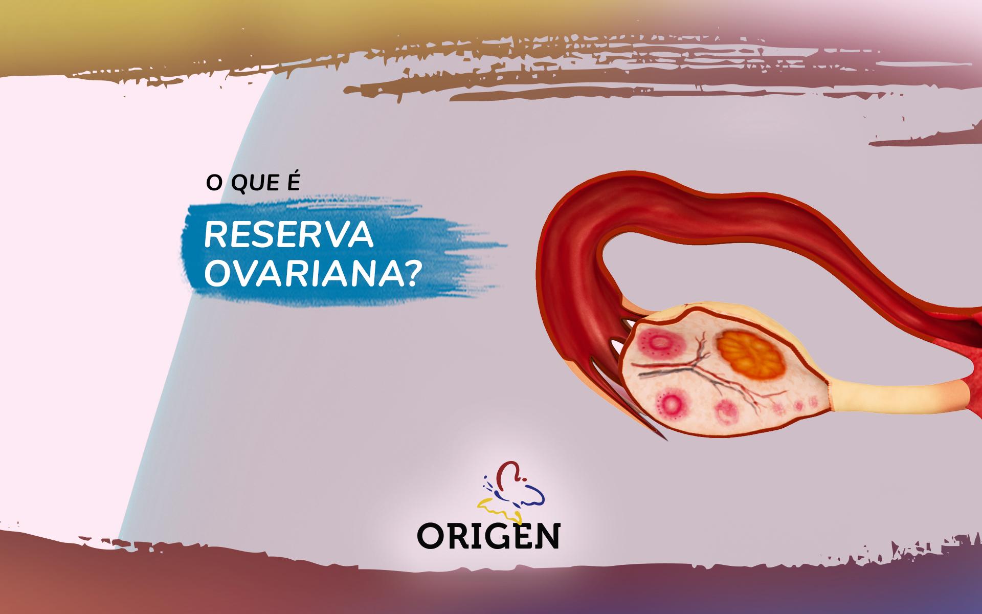 O que é reserva ovariana?