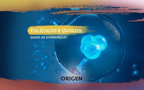 Folículos e óvulos: quais as diferenças?