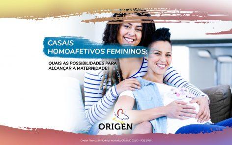 Casais homoafetivos femininos: quais as possibilidades para alcançar a maternidade?
