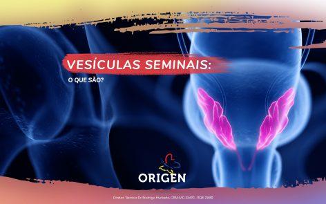 Vesículas seminais: o que são?